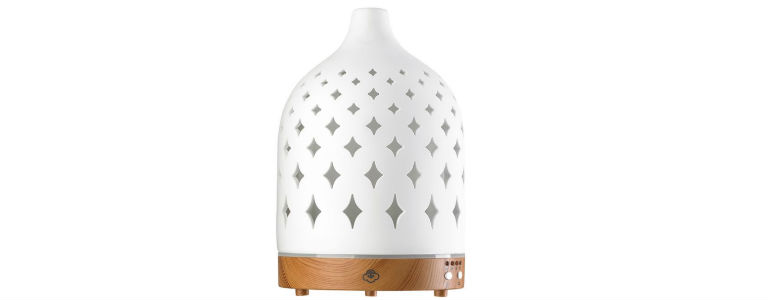 Bed Bath and Beyond Diffuser