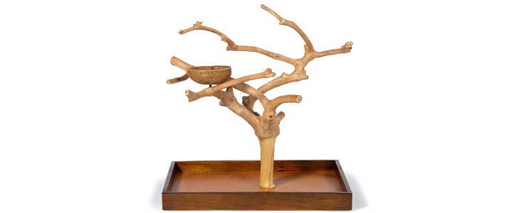 Tree Stand Image