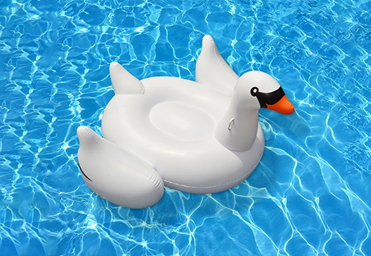 Inflatable Baby/Kids Swan Floatie Freebie