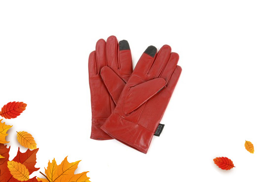 Women's Touch Screen Leather Gloves Freebie