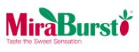 MiraBurst Logo