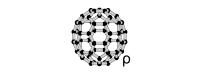 PureC60OliveOil.com Logo