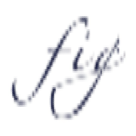 Fig Linens Square Logo