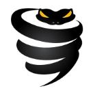 VyprVPN Square Logo